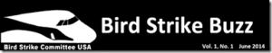 2managing raptors at the airport